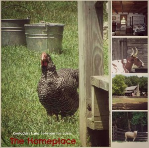 The Homeplace LBL