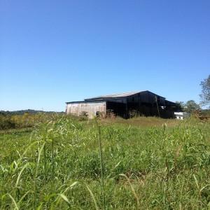 Kentucky Farm Picture