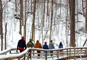 Winter Hike at Pine Mountain State Resort Park