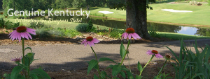 Kentucky Dam Village State Resort Park Golf Course