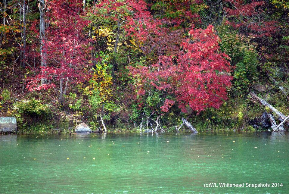 Fishpond Lake Pictures | Genuine Kentucky