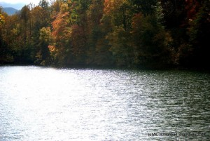 Fishpond Lake in Letcher County, Kentucky