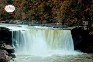 Cumberland Falls by Lori Wells Photography