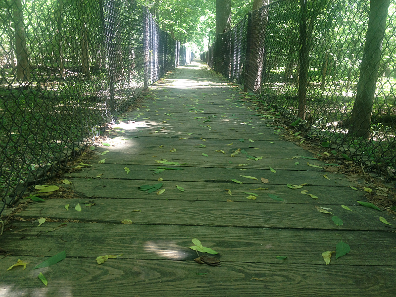 One of the trails at Panther Creek Park, Owensboro