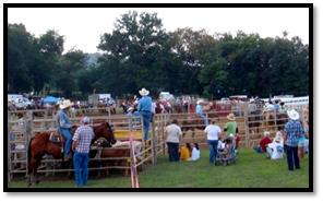Wrangler Campground Rodeo