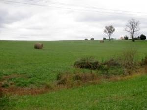 Rural Kentucky in Autumn