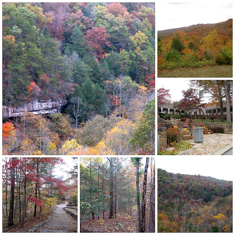 Pine Mountain in Autumn Pictures
