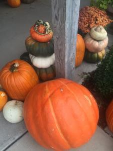 Pumpkins at Trunnell's Farm Market in Utica - Near Owensboro, Kentucky.