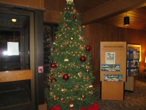 Barren River Christmas Tree