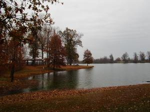 Madisonville City Park, Autumn 2015