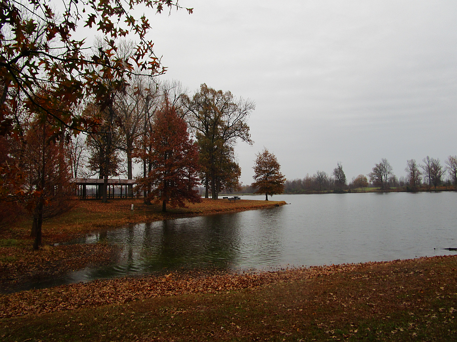Madisonville City Park, Autumn 2015