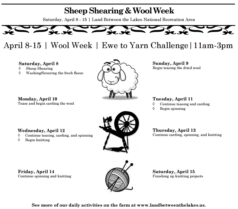 2017 Sheep Shearing and Wool Week at The Homeplace