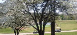 General Burnside State Park Golf Course