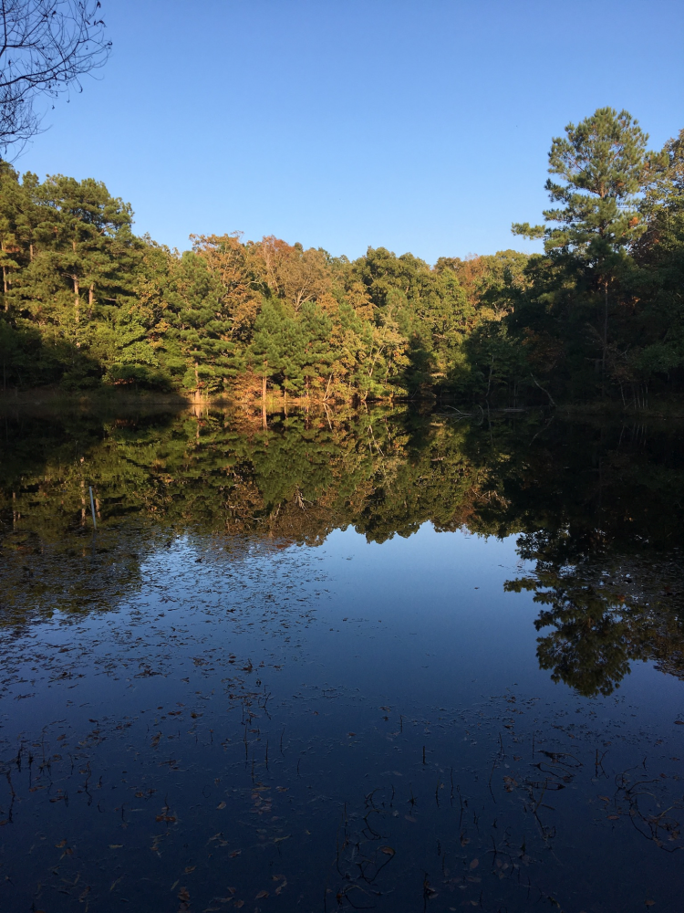 Cedar Pond, Land Between the Lakes in Autumn
